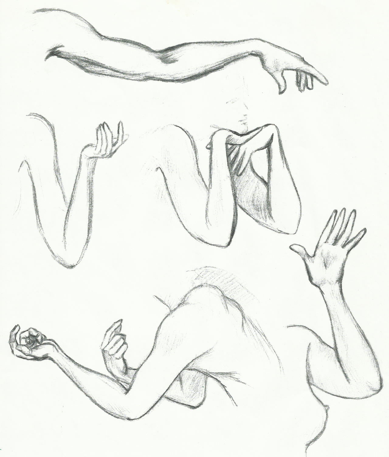 Daily Sketch - Arm/Hand Study By Pixel-Slinger On DeviantArt