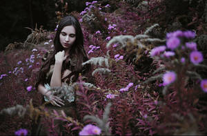 Lady in the middle of Flowers by FrancescaAmyMaria