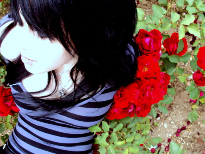 Emo roses by deemayshatered on deviantart - Emo rose pictures ...