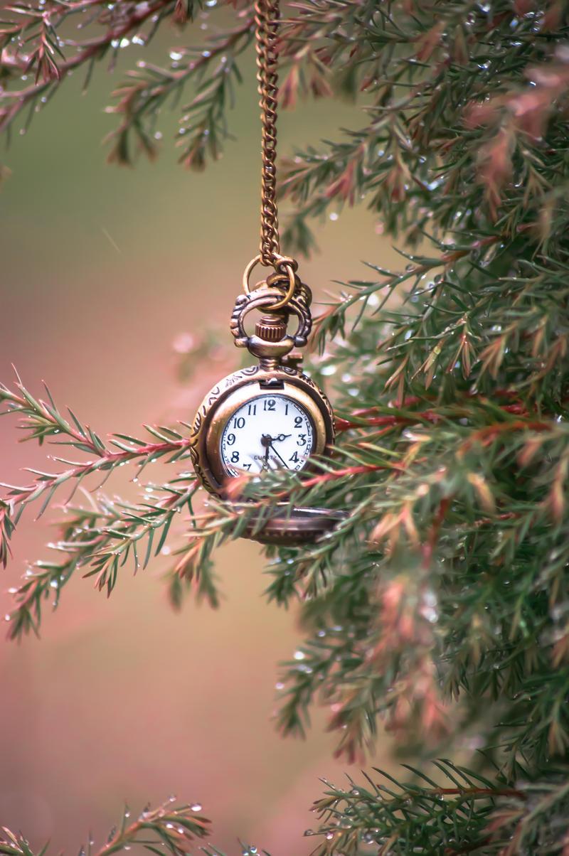Rain clocks by NRichey