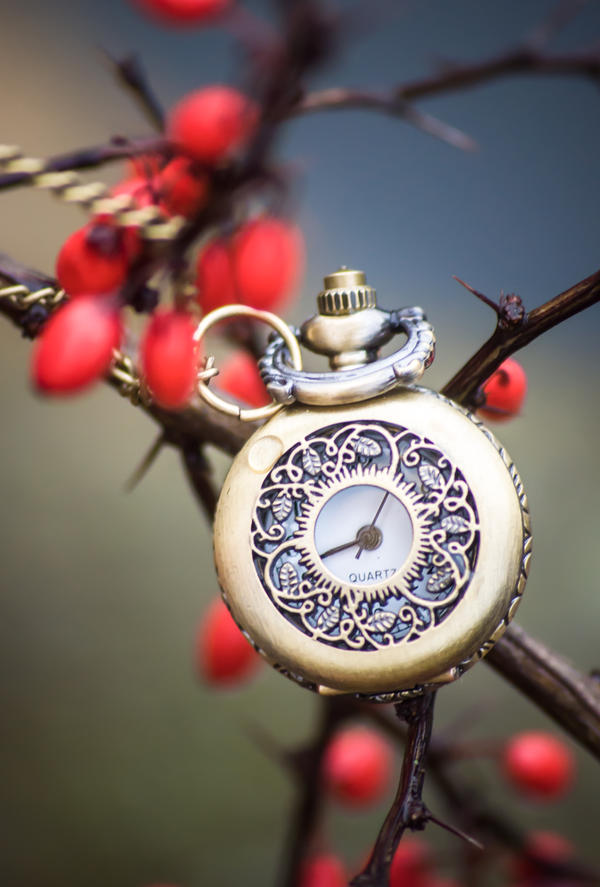 Clocks by NRichey
