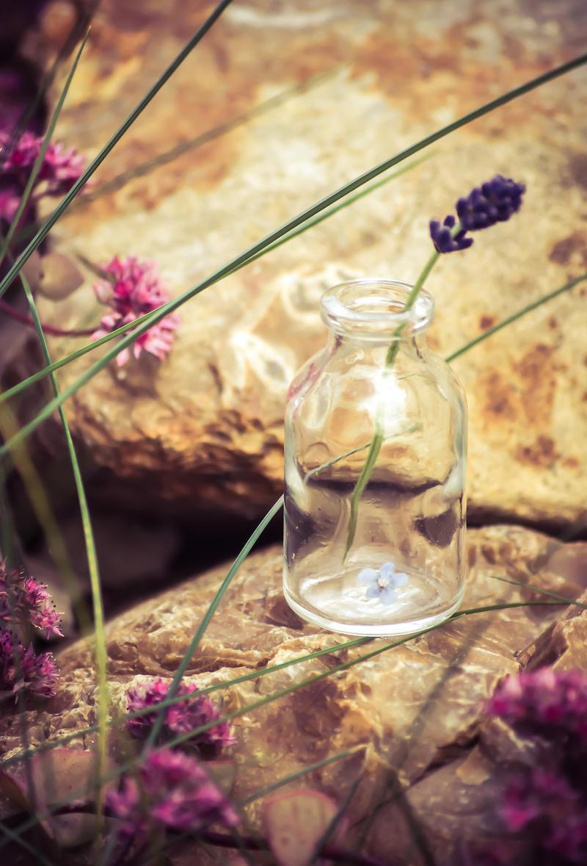 Lavender in phial by NRichey