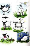Random Sheep sketches