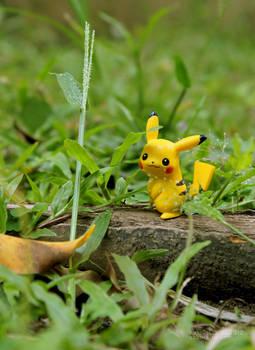 A wild Pikachu appeared!