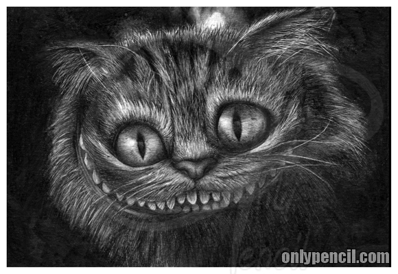 The Cheshire Cat by chandito