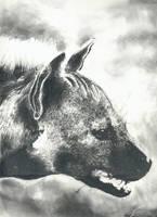 Hyena by chandito