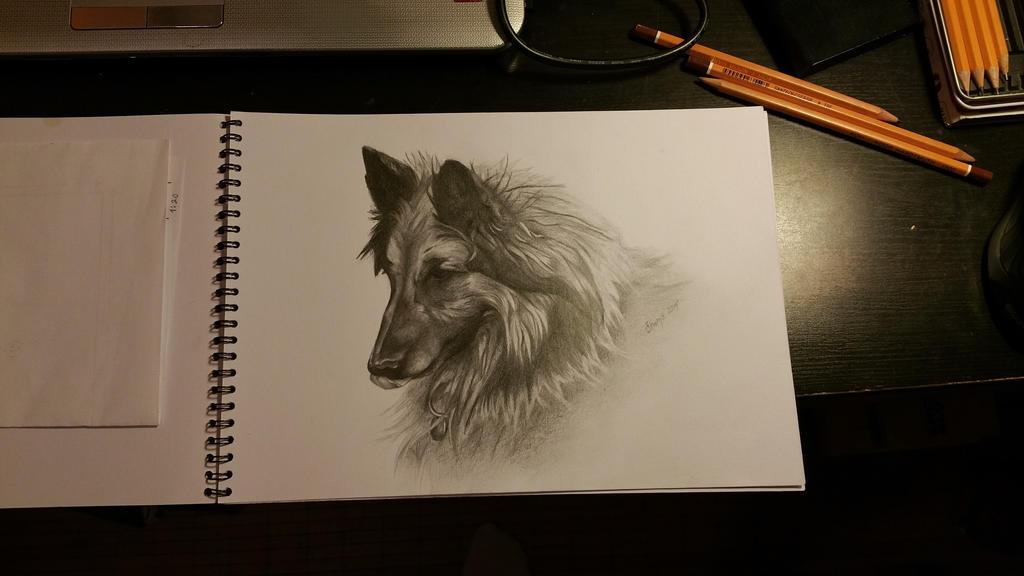 Dog III. by Ctverys