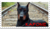 Kapone Stamp by TheWondrousCorvus