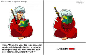 InuYasha's Discovery by CptFarfegnugen