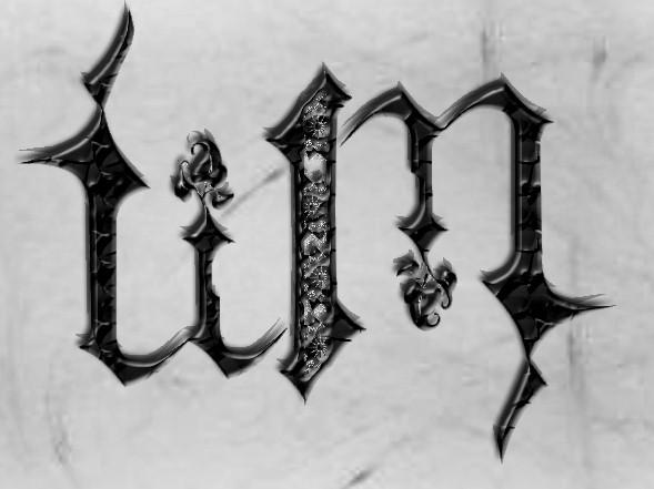 Ambigram, Tim by lyrad24