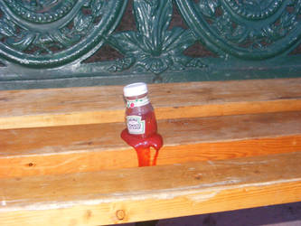 Ketchup bottle on Park Bench by angelstar22