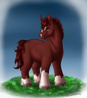 My Little Draft Pony