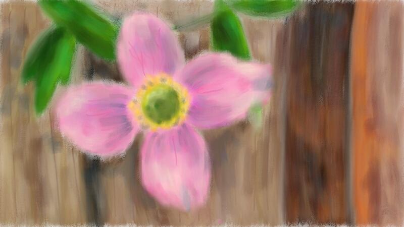 Another Flower by Erikku8