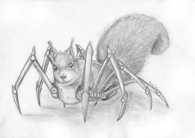 Spider Squirrel by JrallxSpenski on DeviantArt