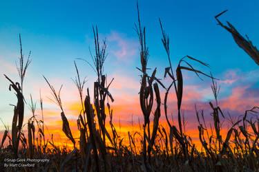 Iowa Sunset by snapgeek