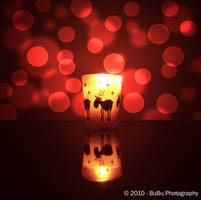 .:Those Christmas Lights:. by bogdanici