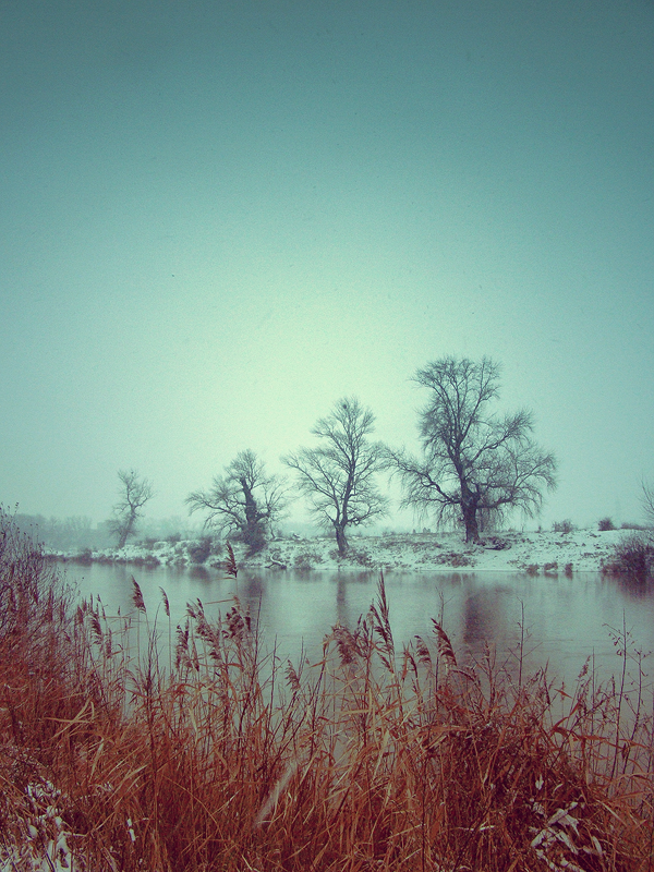 .:Fall in Winter:. by bogdanici