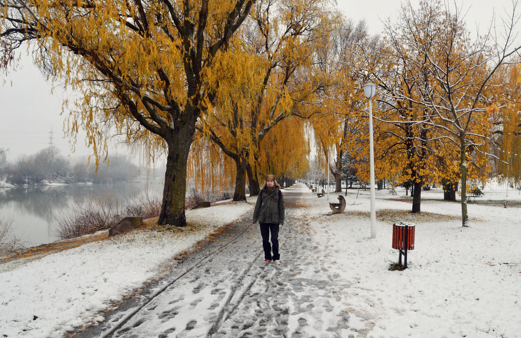 .:Winter is coming:. by bogdanici