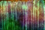 Vibrant Grunge 1 by WebTreatsETC
