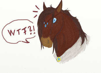 Riko horse finnished by Crow-Face