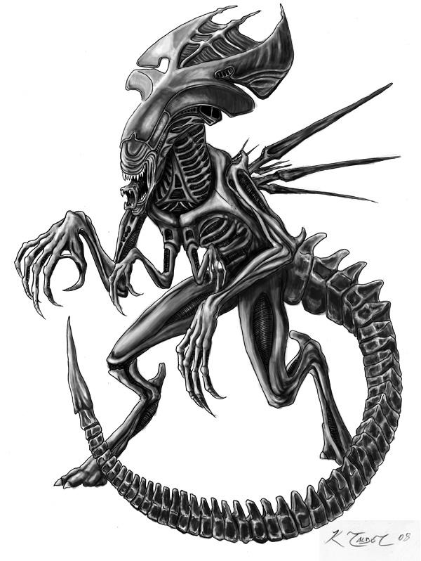 Queen Alien by ktalbot on DeviantArt