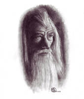 Gandalf by ktalbot