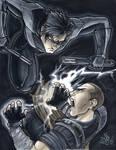 Nightwing vs. Starkiller Heroes Con 2015