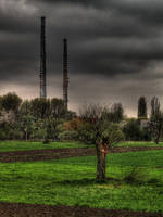The tree and chimneys by kubica
