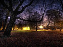 The Decjusz Park by kubica