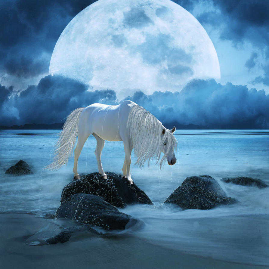 water horse by giniwolf on deviantart