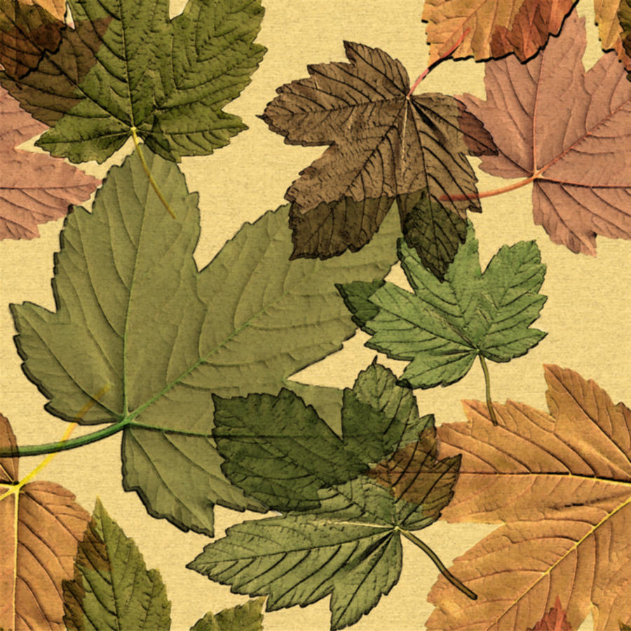 seamless_leaves_texture2