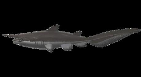 OceanFishing/Grand Mer - Goblin Shark Model by farhan43