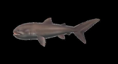 OceanFishing/Grand Mer - Megamouth Shark Model by farhan43