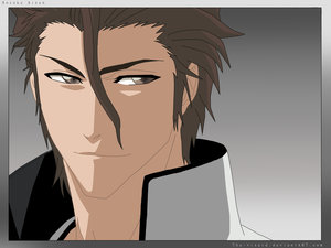 http://fc02.deviantart.net/fs22/f/2008/020/a/3/Manipulative_and_Devious_Aizen_by_Club_Bleach.jpg