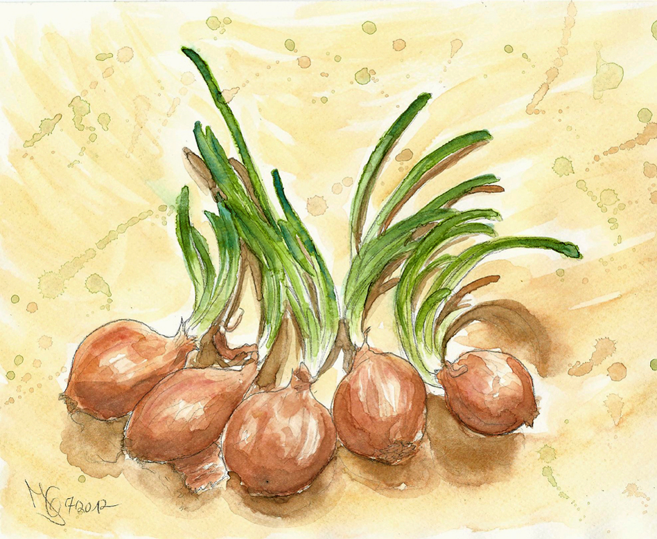 Five Onions with cool hair styles by Tabascofanatikerin