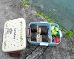 Off to the Lake-Bento