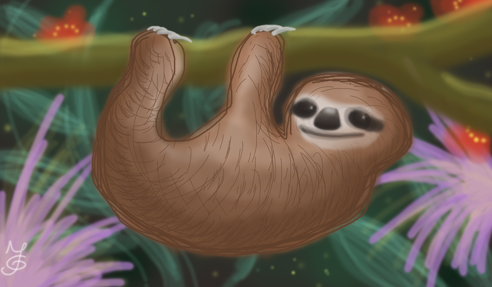 Sloth (first private Wacom tablet drawing) by Tabascofanatikerin