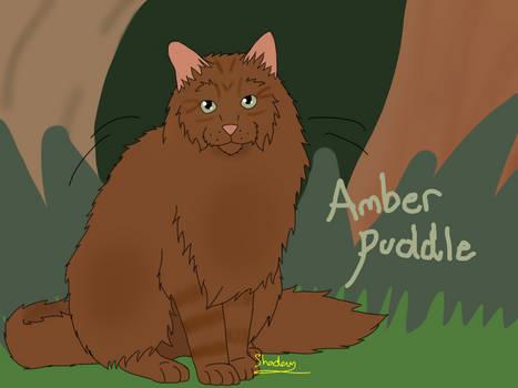 Amberpuddle