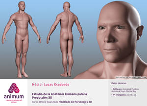 Human Body Anatomy Study for 3D Production