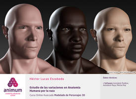 Race Variations in Human Anatomy Study