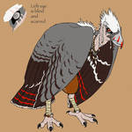 Yun the Vulture