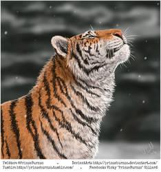 Hunter of the Winter by PrinzeBurnzo
