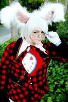 The White Rabbit by Valdrein