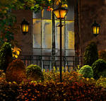 Patio Garden (Background Stock)