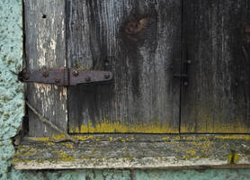 Decayed Mossy Shutters by stock-pics-textures