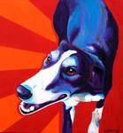 Greyhound - Evie