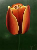 Fairy in a Flower by TheJenjineer