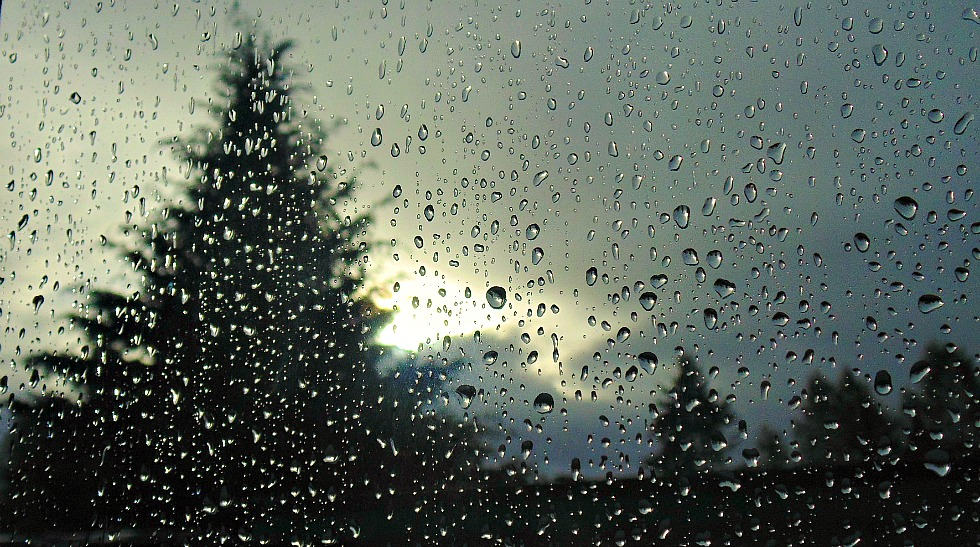 Rain by sojala