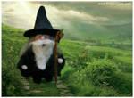 Gnomey As Gandalf