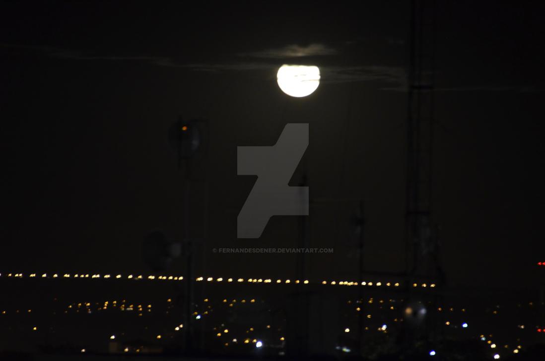 Moonlight by fernandesdener